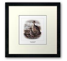 BEACH THICK-KNEE #3 Framed Print