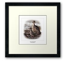 BEACH THICK-KNEE #3 Framed Print