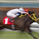 Neck and Neck Horse Race by caqphotography