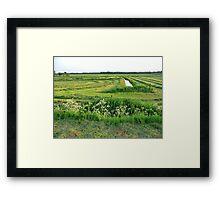 an unbelievable Netherlands landscape Framed Print