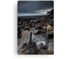 Swann Beach, West Coast. Canvas Print