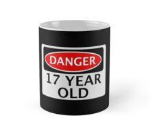 DANGER 17 YEAR OLD, FAKE FUNNY BIRTHDAY SAFETY SIGN Mug