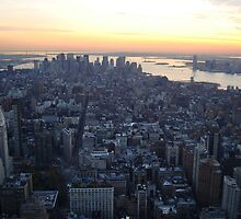 Downtown Beauty, Manhattan Sunset. New York, NY. City Sun Setting. by Michele Ford
