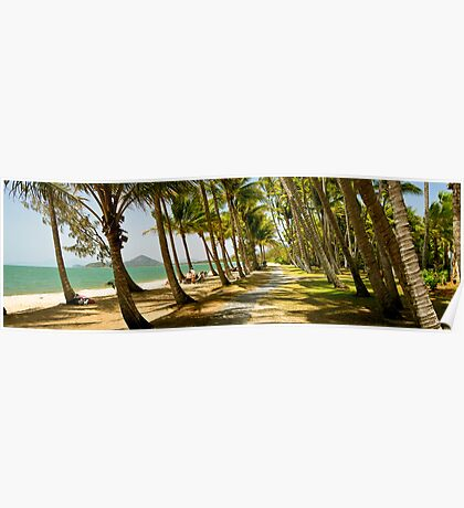 PalmCove - Coconut Trees at Midday 6 Poster