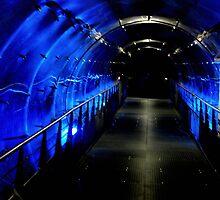 Blue Tunnel by Britta Döll