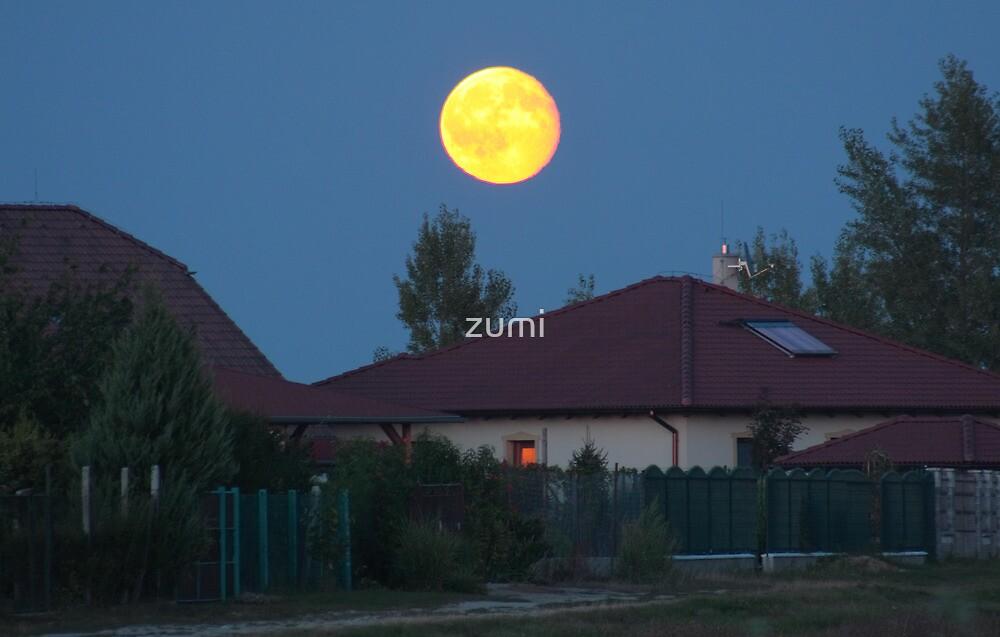Moonrise by zumi