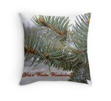 Wishing You a Winter Wonderland Throw Pillow