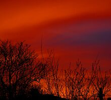 Red Sky At Night #2 by L. Haverkamp