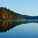 November Morning by Phillip M. Burrow