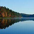 November Morning by Phillip M. Burrow