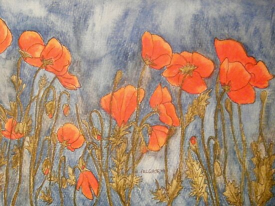 Flanders Poppies by Alexandra Felgate