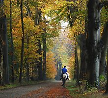 Riding towards the country-house in early November by jchanders