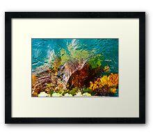 Sea Weed Framed Print