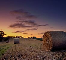 Make hay, not war. by StuartStevenson