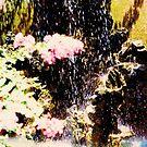 hongkong garden by elisabeth tainsh