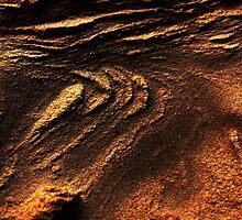 The Hidden Land - Sand Dunes Of Mars by Aileen David