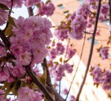 Parkchester Through the Cherry Blossoms Sticker