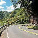Hana Road, Maui, Hawaii by Teresa Zieba