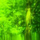 Green Wood Serie n°2 by edend