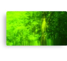 Green Wood Serie n°2 Canvas Print