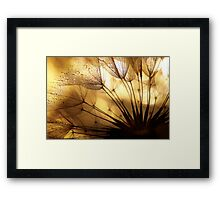 Glimmers Framed Print