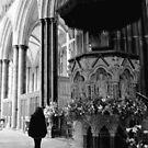 Sailsbury Cathedral by Jo Alfie Wimborne
