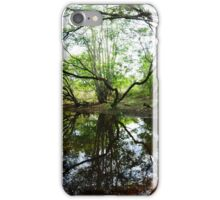 Small Lake iPhone Case/Skin