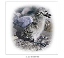 BEACH THICK-KNEE #4 by owen bell