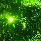 Green Wood Serie n°3 by edend
