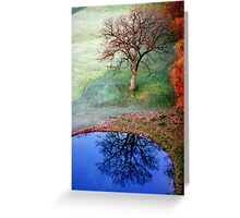 Mirror, mirror, who is the most beautiful of all.... Greeting Card