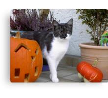 Halloween Holly  Canvas Print