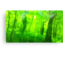 Green Wood Serie n°5 Canvas Print