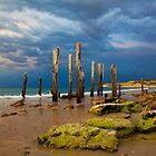 Port Willunga Ruins by Darryl Leach