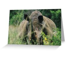 Hey there big fella!! - Hluhluwe-Umfulozi, South Africa Greeting Card