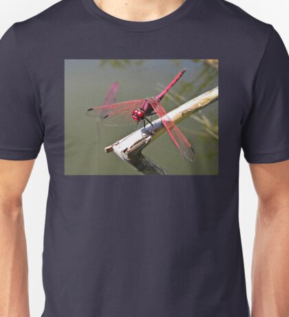 Red-veined Dropwing Dragonfly Unisex T-Shirt