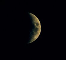 September Moon by Linda Yates