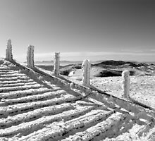 Stairway To Heaven - 2 (dedicated to Led Zeppelin - repost)  by Nedim Bosnic