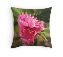 Pink Winds  Throw Pillow