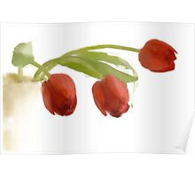 Red tulips in yellow vase Poster