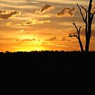 Colourful Ending - Buchanan NSW by CasPhotography