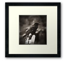 Standing on a Bench  Framed Print