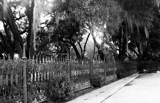 """White Pickett Fences by Tomas """"Twiggy"""" Ramirez"""