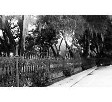 White Pickett Fences Photographic Print