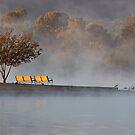 Misty Morn by Ann J. Sagel