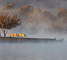 Misty Morn by Ann J. Sagel