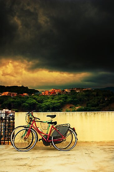 Under an ominous sky by Silvia Ganora