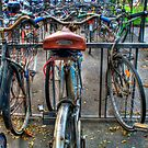 Parking of bicycles  by oreundici