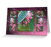 Dressed in ice crystals - Merry Christmas Greeting Card