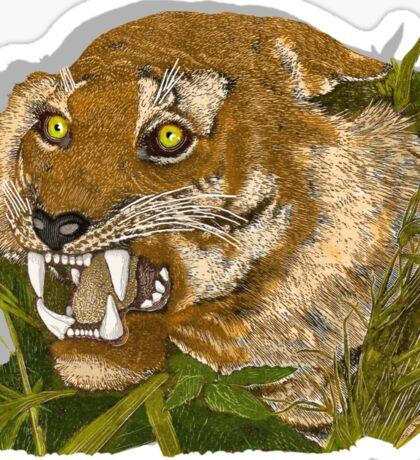 Tiger. Sticker