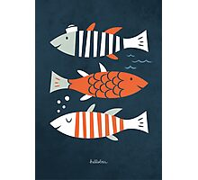 HELLO FISHES!  Photographic Print